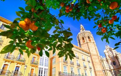 Valencia, volop vitamine G