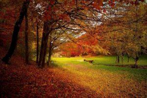 Wandelreis door prachtig Kent