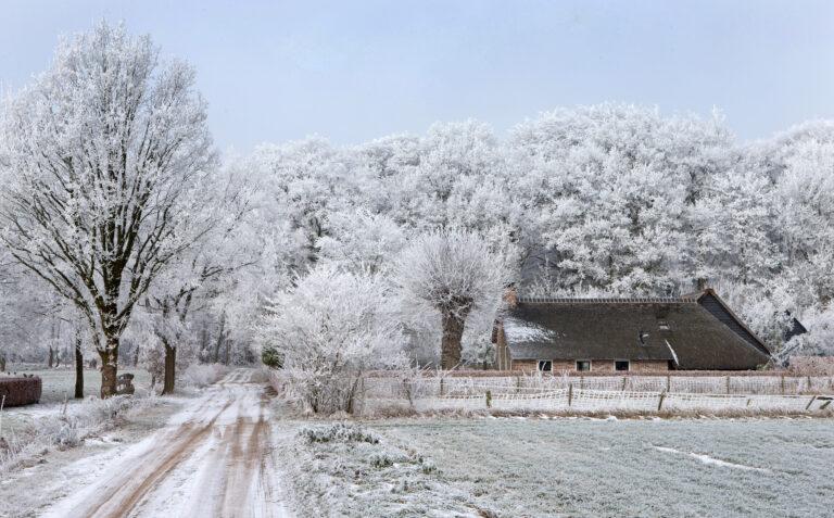 Sterrenkerst in sfeervol Drenthe