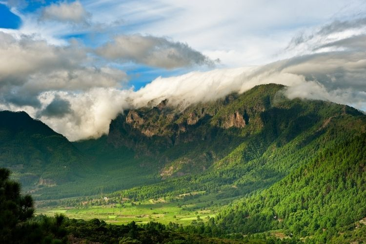 Spaans La Palma: groen, groener, groenst