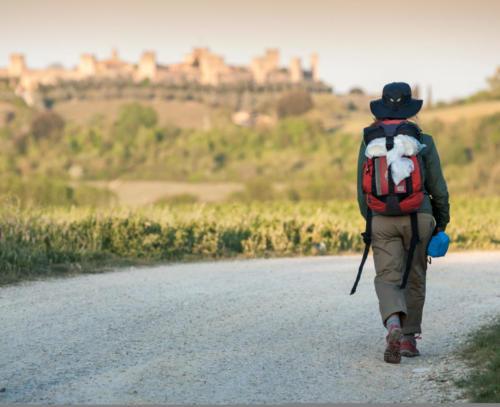 Girl walking on Via Francigena