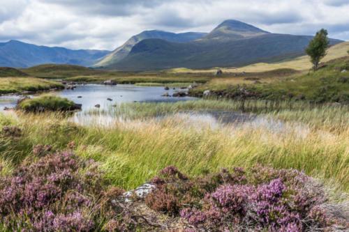 Lochan na h-Achlaise, Road near the lake near Glen Coe. Scotland