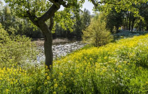 Lake Hondegat Asperen