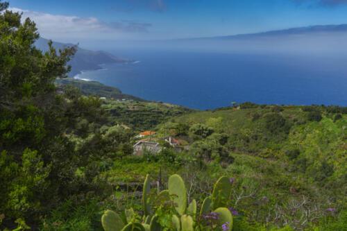 La Palma Kanaren canarias canary islands travel reise holiday spain insel vulkan lava atlantik urlaub erholung relax grün grüne