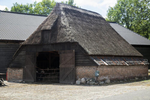 Historic stable with thatched roof, Drenthe; Netherlands