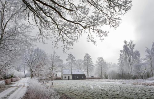 Winter. Frost. Snow. Colony house. Koloniehuisje.  Frederiksoord Drenthe Netherlands. Maatschappij van Weldadigheid