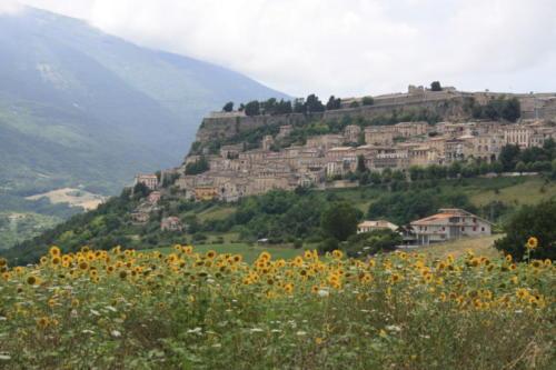 San Bartolomeo 5